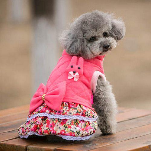 لباس سگ