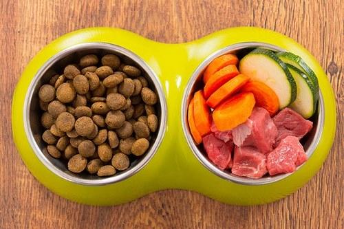 ترکیبات غذای خشک سگ بوی داگ