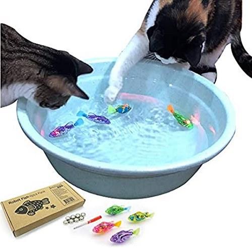 اسباب بازی برای گربه