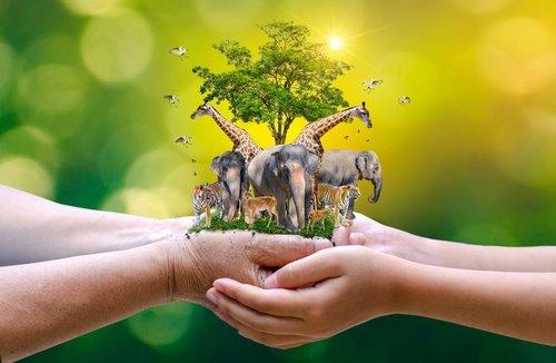 جلوگیری از انقراض حیوانات