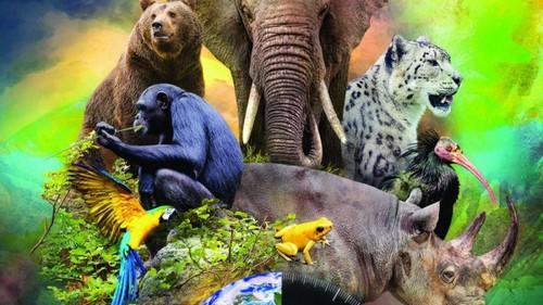 دلایل انقراض حیوانات