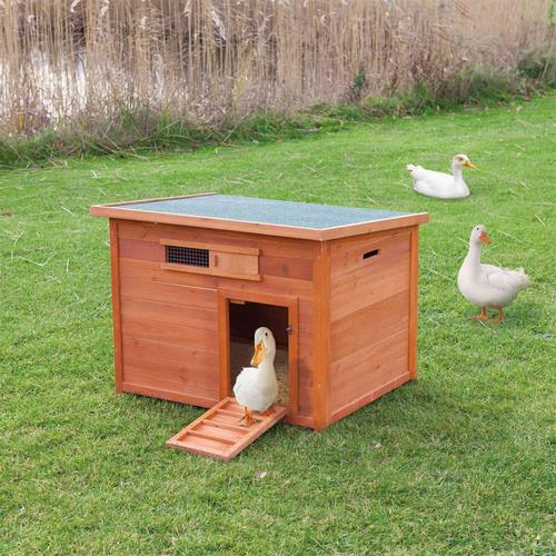 Duck cage