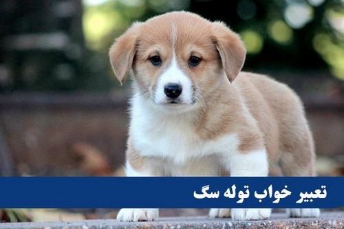 تعبیر خواب سگ امام صادق