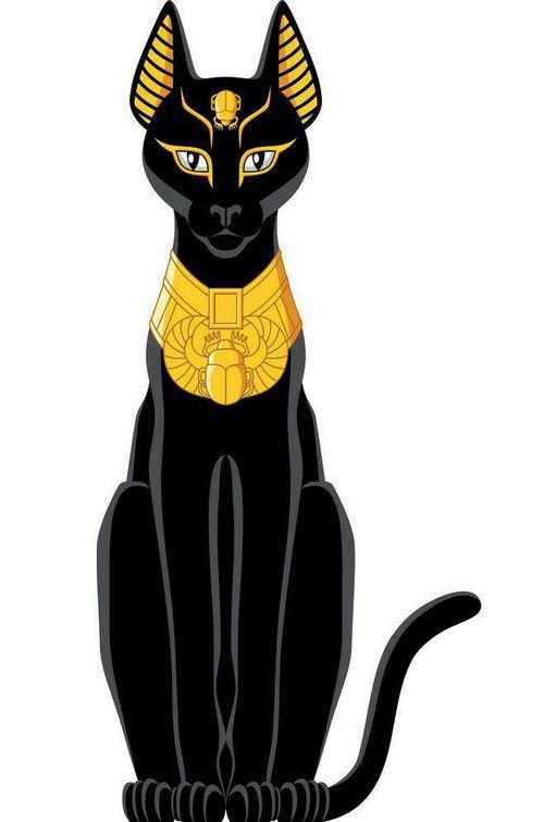 خواص گربه سیاه
